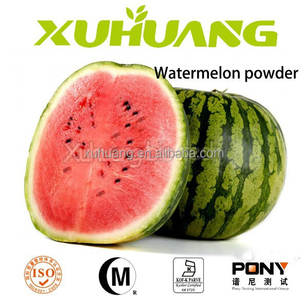 Factory Price Watermelon Extract/watermelon Powder Juice Fruit ...