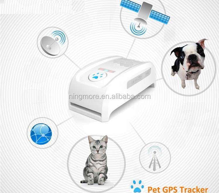 Best new ningmore Free Google 맵 Link GPS 칼라 Pet Spy equipment/칩 GPS 로케이터 아무데나 대 한 Kids 개 cars