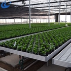 farm agricultural technology canna rolling benches for commercial greenhouse benches