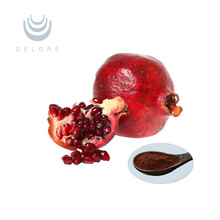 free sample pomegranate peel extract powder ellagic acid 90%