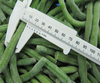 2014 year China supplier frozen chilled green bean cuts cut