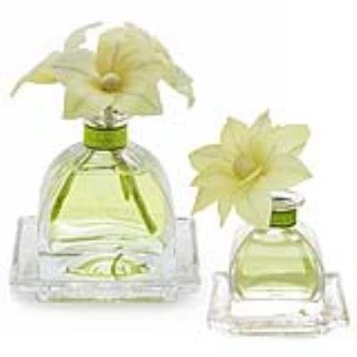 LEMON VERBENA Agraria Flower Diffuser Combo - AirEssence and PetiteEssence