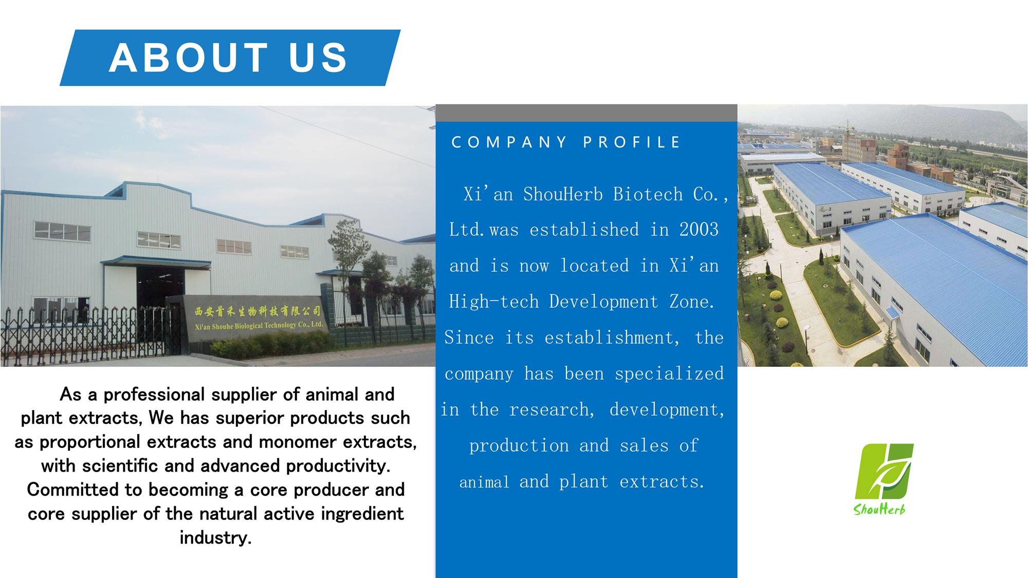 Approvisionnement d'usine haute pureté Extrait De Thé Vert naturel