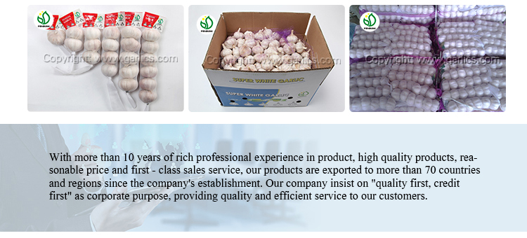 New Corp Grade A Fresh White Chinese Garlic with All Kind of Package