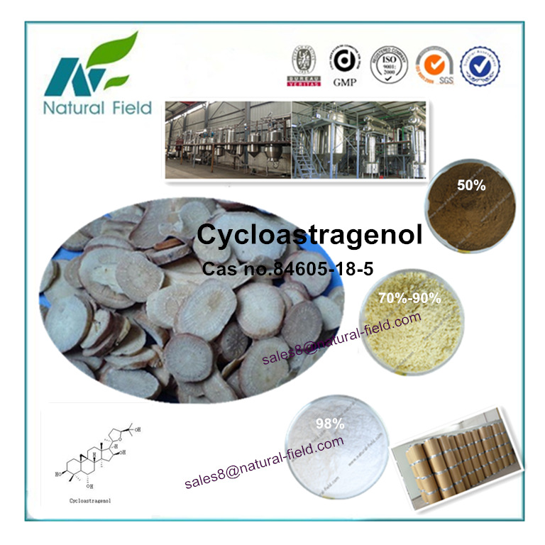 plant extract Astragalus Root P.E. Cycloastragenol powder