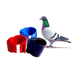 tag rfid chip ring for pigeon