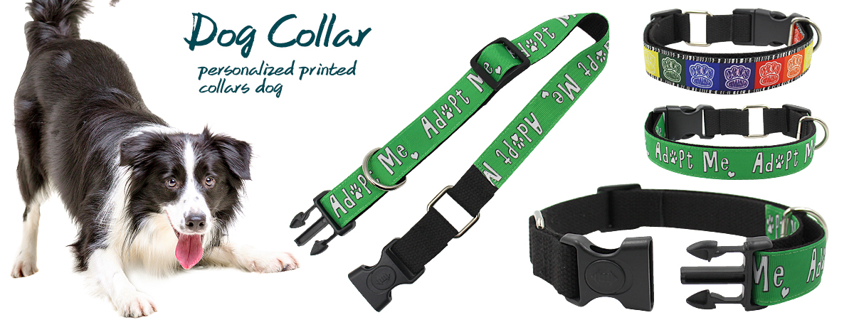 Free sample customized eco-friendly plastic buckle small adjustable luxury dog collar