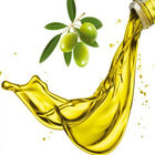 Customization pure olive oil organic essential oil