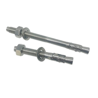 Free Sample Worldwide 304 316 Stainless Steel Wedge Anchor Bolt Expansion Bolt M10 M12 M14 M16 M20
