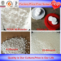 China Supplier Free Samples chlorine tablets manufacturer