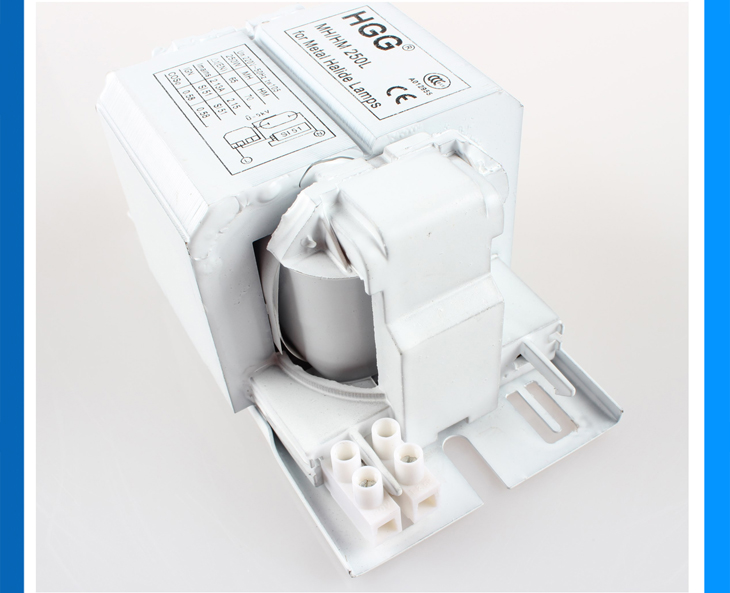 250W Philips Magnetic Ballast For Metal Halide And Mercury Lamp