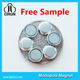 Free Sample 10mm 12mm small disc neodymium monopole magnet for sale