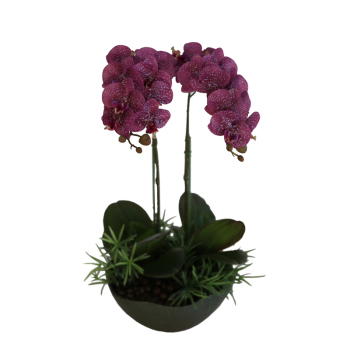 Whiteblackyellowrose Red Colorful Artificial Phalaenopsis Orchid