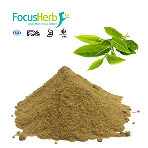 Green Tea Extract Theanine, 50% L-Theanine