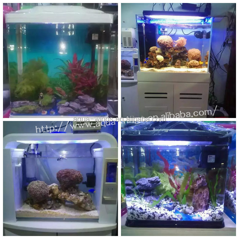 U Aquariums Tank Fashion Glass Bullet Aquarium Fish Tank For Guppy ...