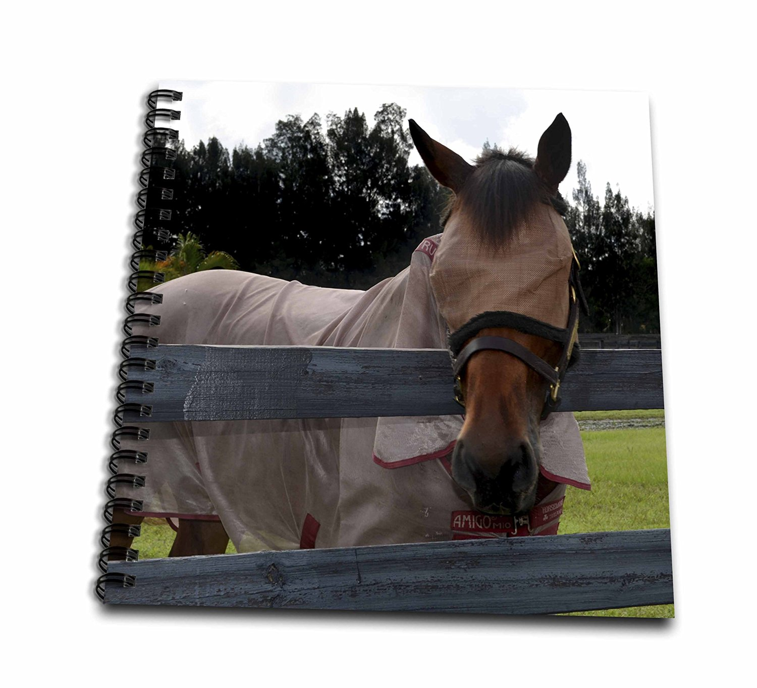 Susans Zoo Crew Animals Horse - Horse head on over fence fly mask - Memory Book 12 x 12 inch (db_162188_2)