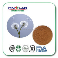 Dandelion root extract,Herba Taraxaci,Dandelion root extract powder