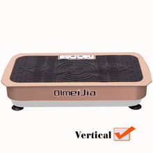 Vertical Power Board Whole Body Vibration Plate (QMJ-319B)