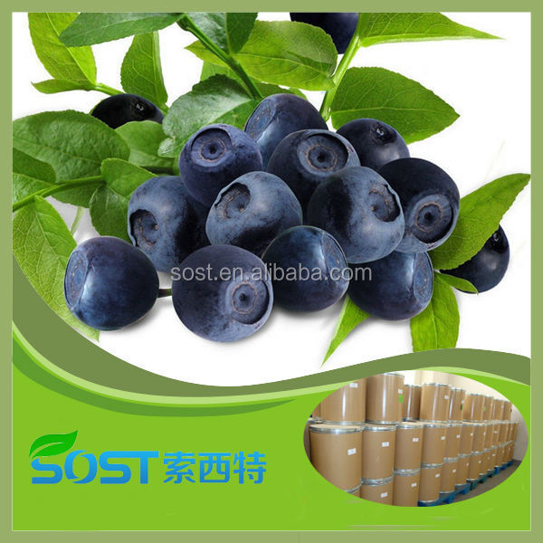 High Quality Organic Acai Berry powder