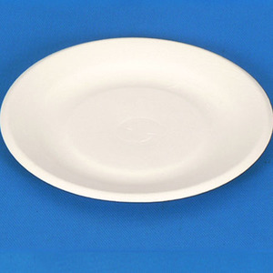 Eco friendly sugarcane bagasse disposable paper pulp tableware