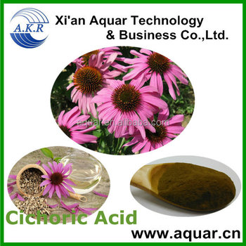 ISO certificate pure Plants of the genus pinecone echinacea Extract