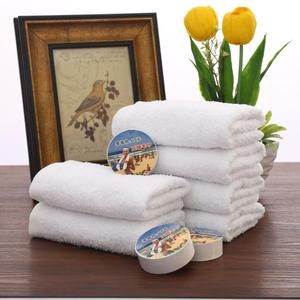 Hot Sale Easy Carry Multi-purpose Cotton Mini Compressed Hand Towel
