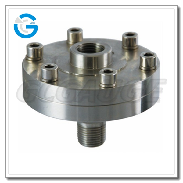 High quality 97 pressure gauge diaphragm seal with threaded connection