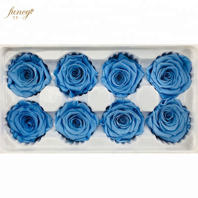 Presentes de Ação de Graças para Professores Anual Preserving Blue Pregnancy Flowers Rose
