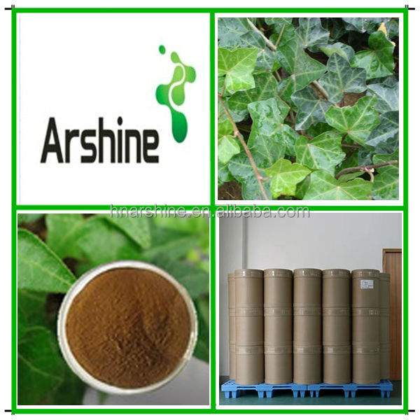 Plant extract Ivy Extract powder,Natural Ivy Extract,Ivy leaves extract