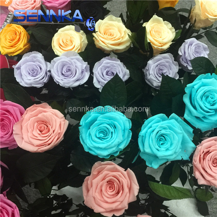 Forever flower everlasting 3-5years preserved rose with leaf wholesale
