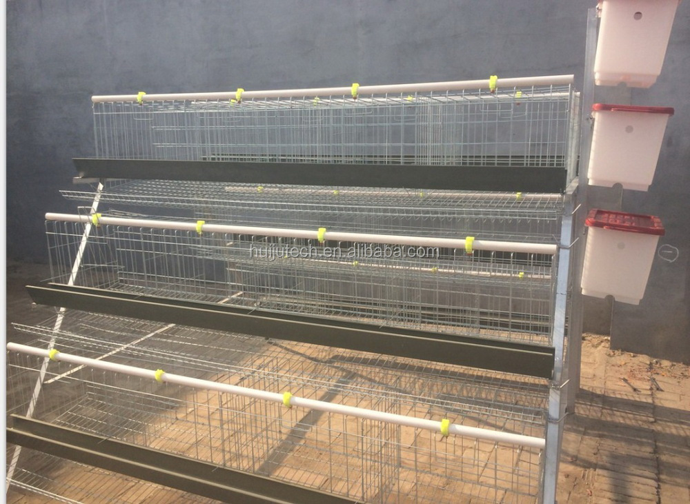 Hot Sale Chicken Cage For Sale In Philippines Chicken