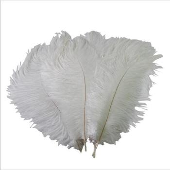 Wholesale 18 to 20 inch Dyed white Ostrich Feather for Wedding Centerpiece ostrich Feathers