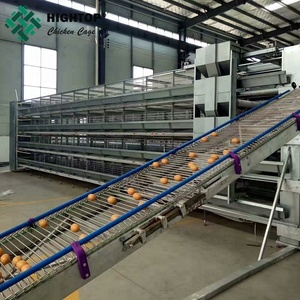 Anti-rust uae chicken farm poultry equipment automatic h type layer chicken cage for sale