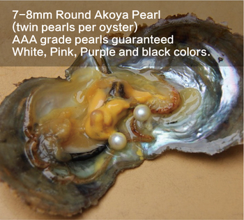 wholesale Saltwater 7-8mm round akoya twin pearls shell oyster pearls
