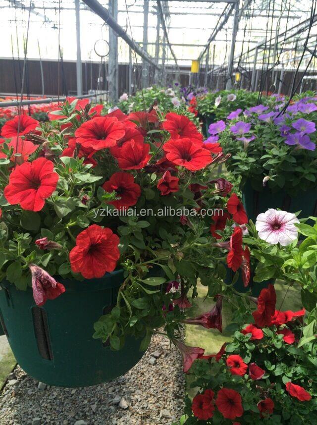Excepcional Jardinagem Vertical Parede Pendurados Vasos De Flores E Vasos De  FQ25