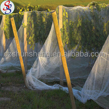 garden netting lowes. Bird Netting Lowes, Lowes Suppliers And Manufacturers At Alibaba.com Garden L