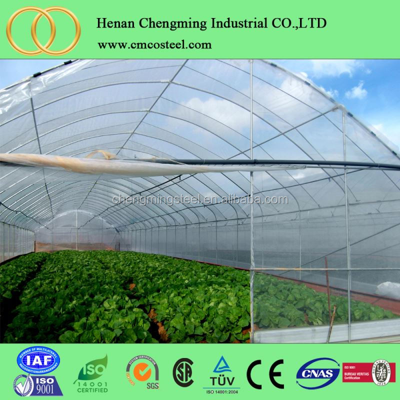 low cost plastic film 200 microns greenhouses structure with hydroponic system on sale
