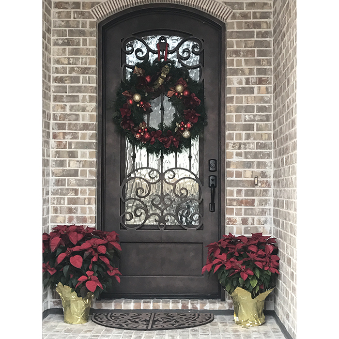 Modern House Main Entrance Wrought Iron Single Glass Entry Door