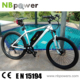 Stock Electric Bike Cycle 250W Electric Cycle 2016 Chinese ebike