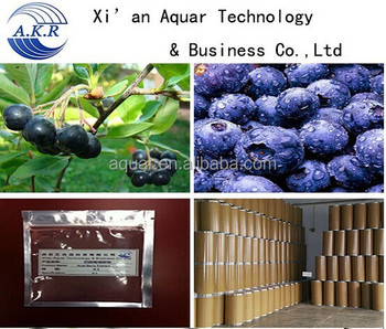 Manufacturer supply frozen acai puree / acai berry juice/acai powder 10:1