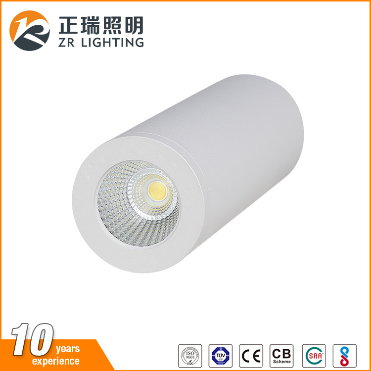 Hot sales dimmable recessed 12w cob round led ceiling light for indoor use