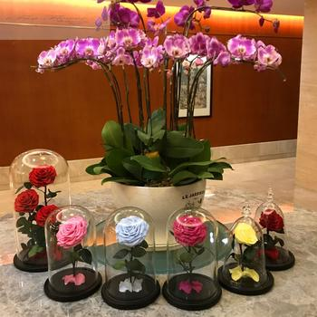 Premier Quality Long Lasting Roses Wholesale Preserved Rose 3pcs