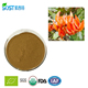 Power Supply High Quality Butea Superba Extract Capsule
