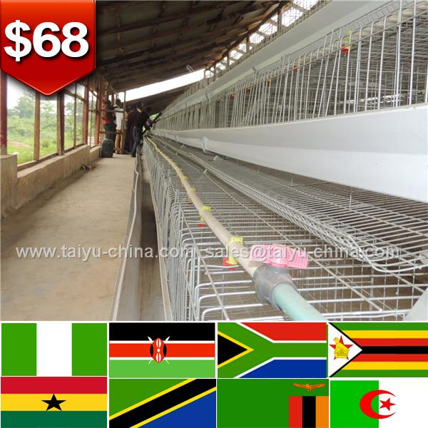 Shilling account 4 layers hot sale layer poultry battery cages on kenyan farm farm