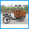 Bicycle Cargo Electric Bike Tricycle for Adults