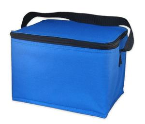 Large picnic disposable can insulated cooler bag /non woven lunch cooler bag