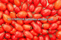 Natural Organic Rosehip Seed Oil