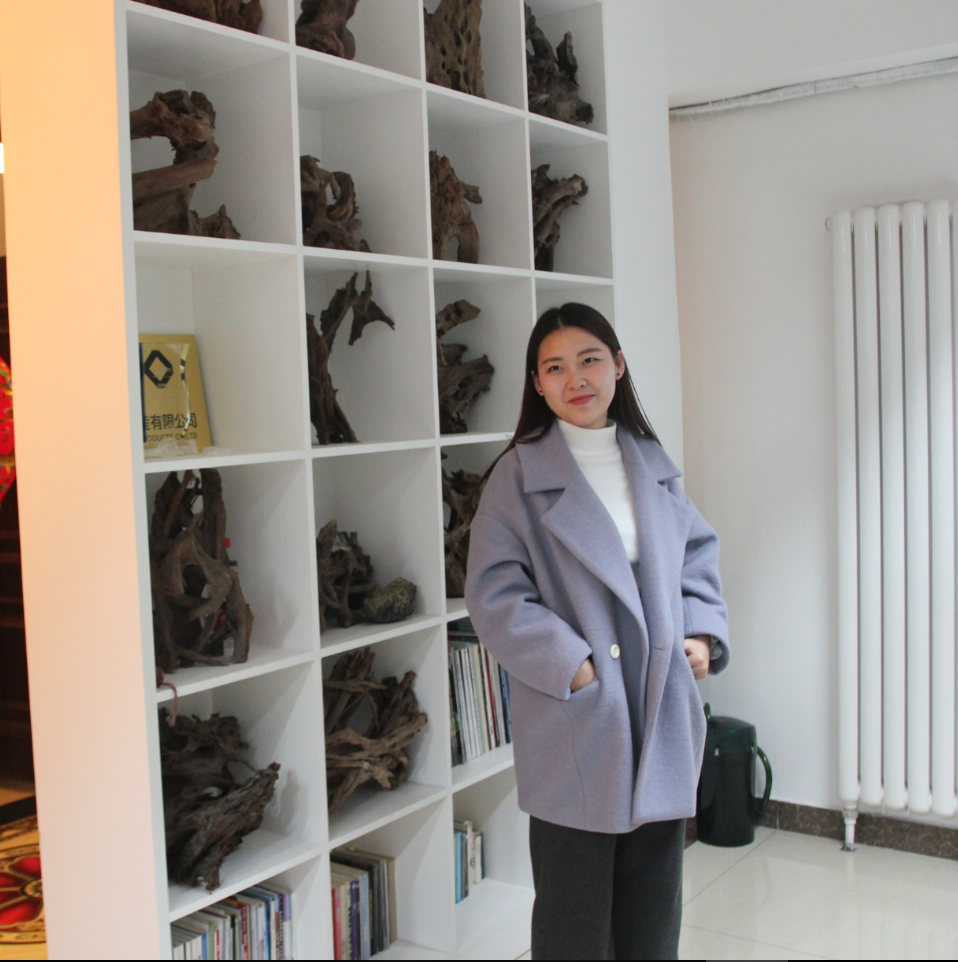 Dalian songsen products co., ltd.   cat litter,pet products