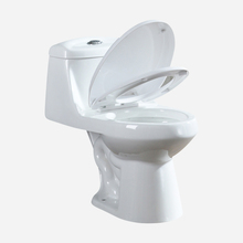 China Sanitair intelligente Wc, smart Wc, Badkamer Keramische Smart Toiletbrillen R028