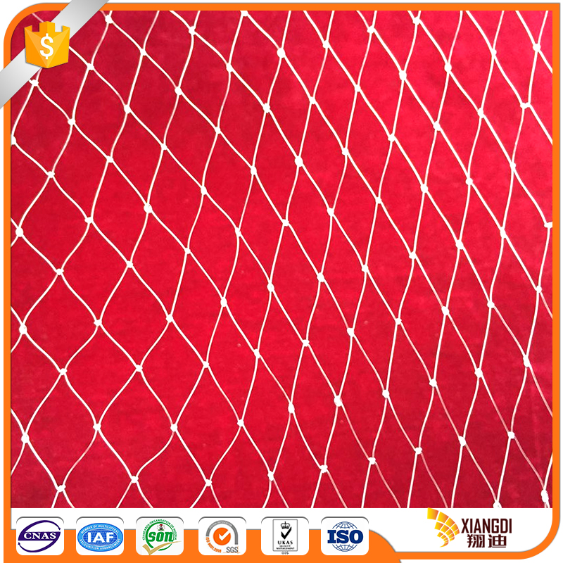 Solid reputation plastic bird protection netting for sale
